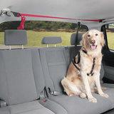 Pets auto veiligheidslijn met riem_7